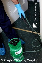 Professional Carpet Cleaners Croydon 3136